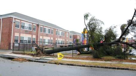 A tree crushes a fence and some playground