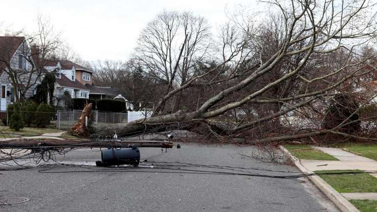 Storm damage is still evident on Oriole Avenue