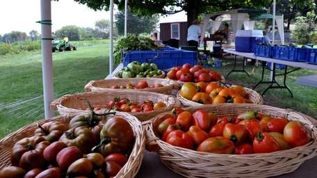 Heirloom tomatoes and other vegetables lie out on