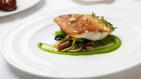 Roasted red snapper arrives on a vegetable fricassee