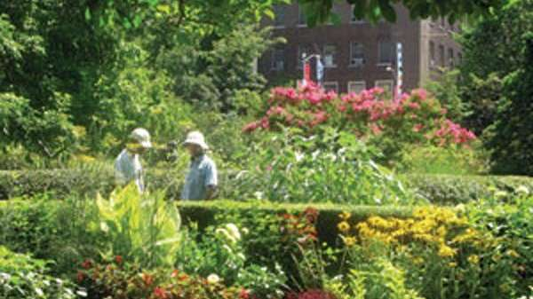 Parks, Plants, and People: Beautifying the Urban Landscape,