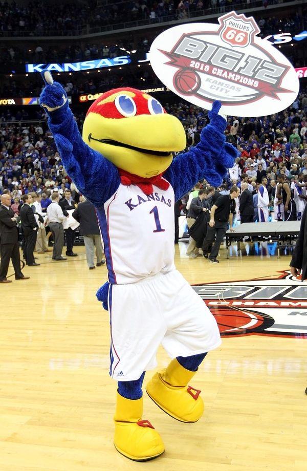 The Kansas Jayhawk mascot celebrates with a championship