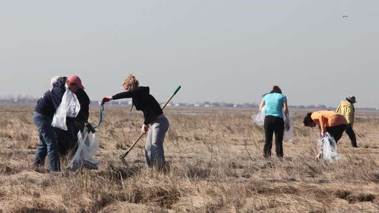 Volunteers working with the environmental group Operation SPLASH