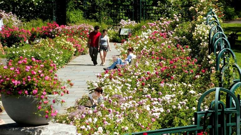 The New York Botanical Garden was founded in