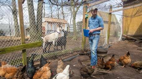 Michael Fiorentino feeds the chickens that he raises