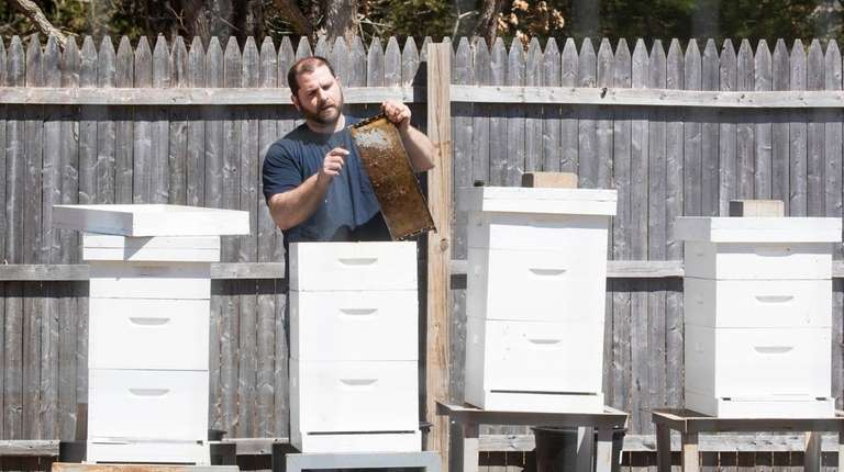 Nick Sarin works on the hives he keeps