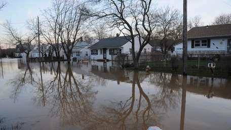 Porter Trent surveys the flooding on Horton Avenue.