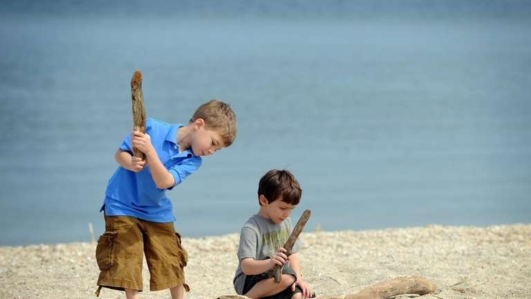 Brian Ferraro, 4, and his brother Aaron, 5,