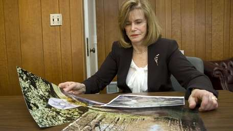 Councilwoman Lee Seeman looks at photographs of her