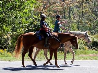 Horse back riding at the Connetquot State Park