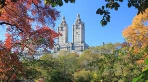 Fall foliage in Central Park, where there are