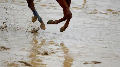 Kentucky Derby winner Justify gallops on a muddy