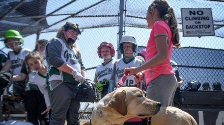 Emma brings her diabetic alert dog to meet