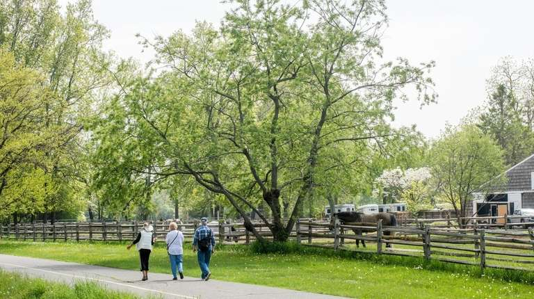 Hikers stroll past the horse stables at Caumsett