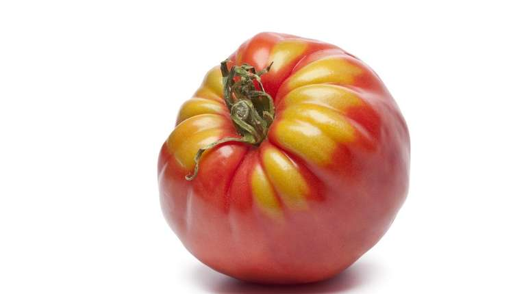 Join the 2018 Tomato Challenge at Newsday on