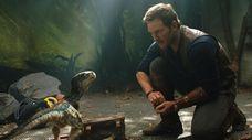 "Chris Pratt with a baby velociraptor in ""Jurassic"