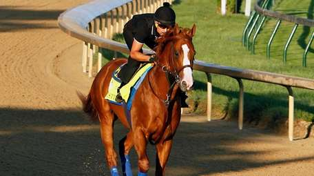 Exercise rider Humberto Gomez guides Kentucky Derby and