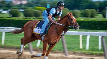 Belmont Stakes hopeful Hofburg gallops around the track