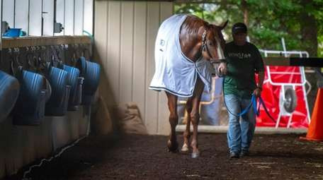 Triple Crown hopeful Justify is hot walked after