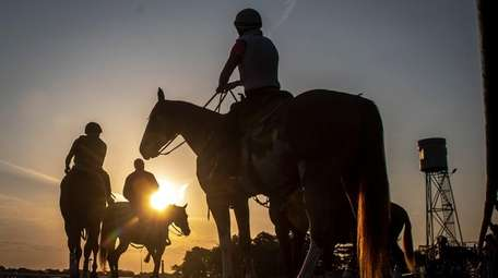 Horses go out for training at Belmont Park
