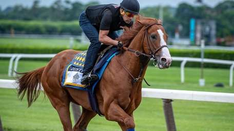 Justify works out under exercise rider Humberto Gomez