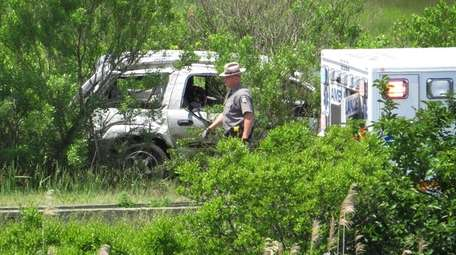 A damaged SUV is seen in the brush