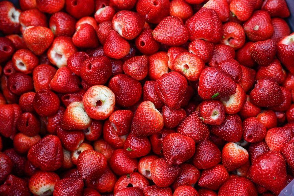 Strawberries hulled at the annual hulling night at