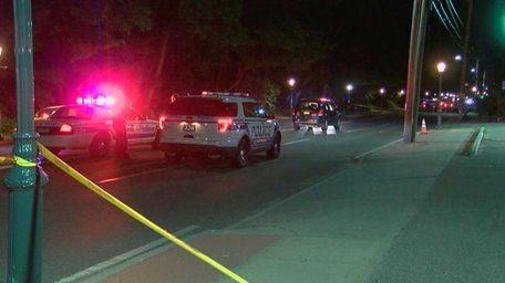 Police investigate the scene where a vehicle fatally