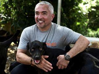 "Cesar Millan, aka ""the Dog Whisperer,"" comes to"