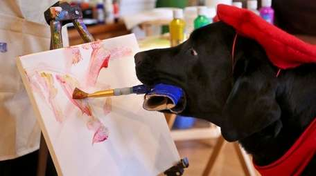 Dagger II the painting dog in artist Yvonne