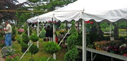 The plant sale is a big draw at