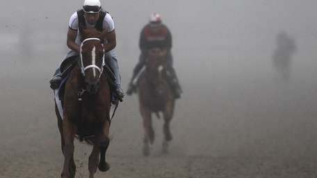 Belmont Stakes hopeful Uptowncharlybrown works out on the