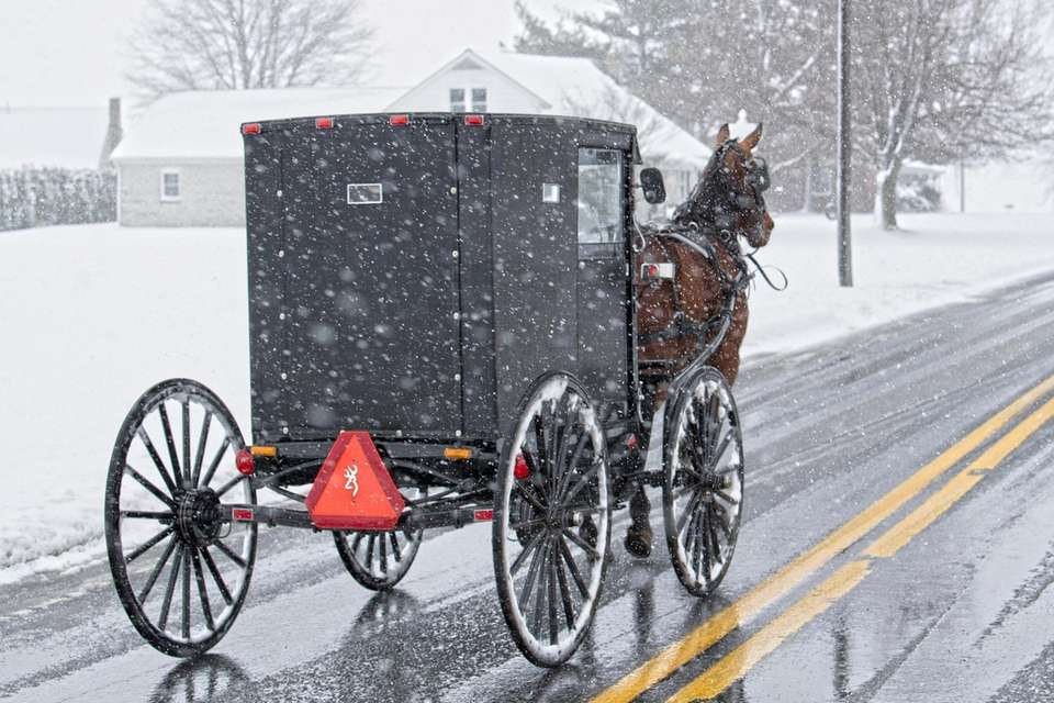 An Amish buggy rides along a snowy Main