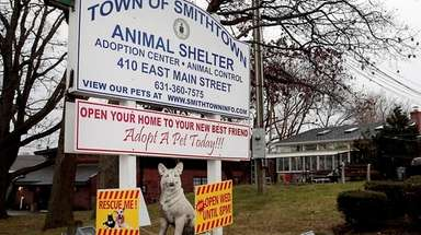 The Smithtown Animal Shelter has annual costs of