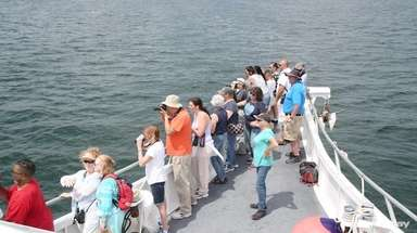 Long Islanders looking to see a humpback whale