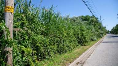 This roughly 1 acre property, located on the