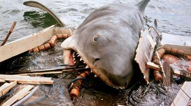 """A scene from Steven Spielberg's 1975 movie """"Jaws."""""""