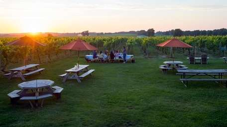 The grounds at Palmer Vineyards in Riverhead, seen