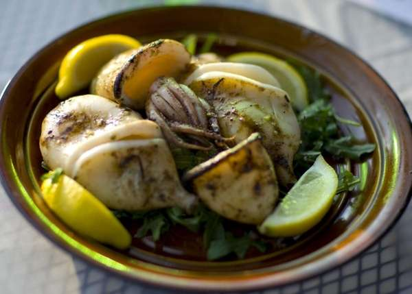 Grilled calamari is one of the appetizers served
