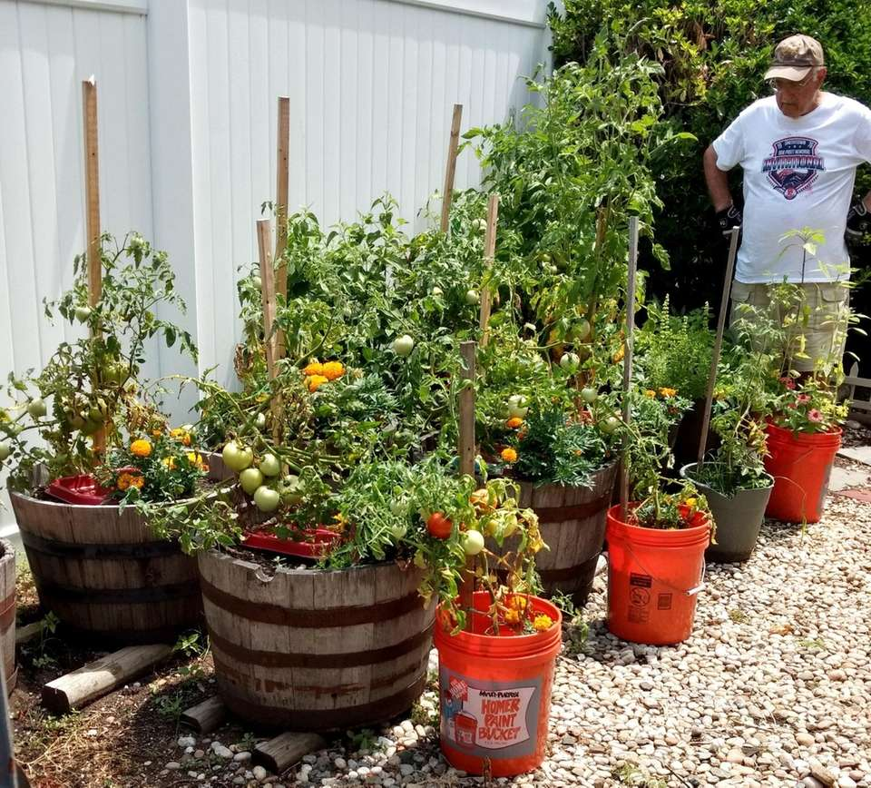 Reader Rich Koenig, of Syosset, has been planting
