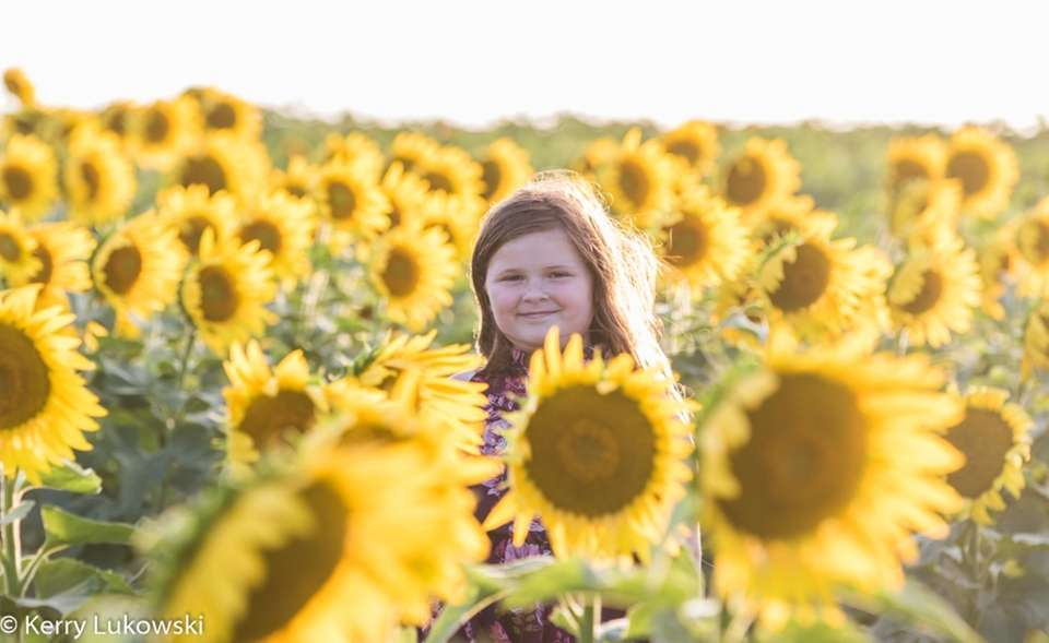 My daughter, Keira, enjoying a Sunflower maze!