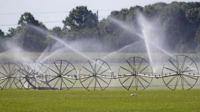 A recent study concluded that water consumption in