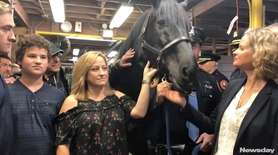 "Police horse ""Mike,"" named in honor of fallen"