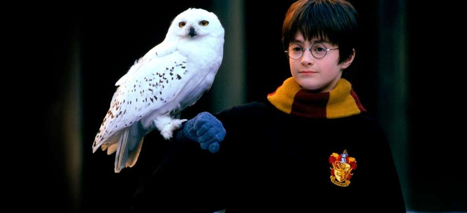 The first film in the Harry Potter movie