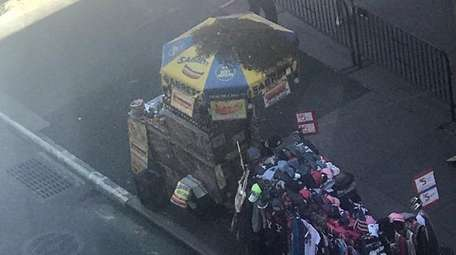 Bees swarmed a Times Square hot dog cart