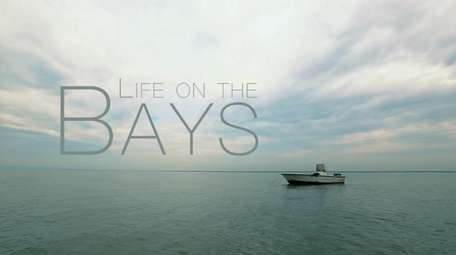 From the bays surrounding Long Island come stories
