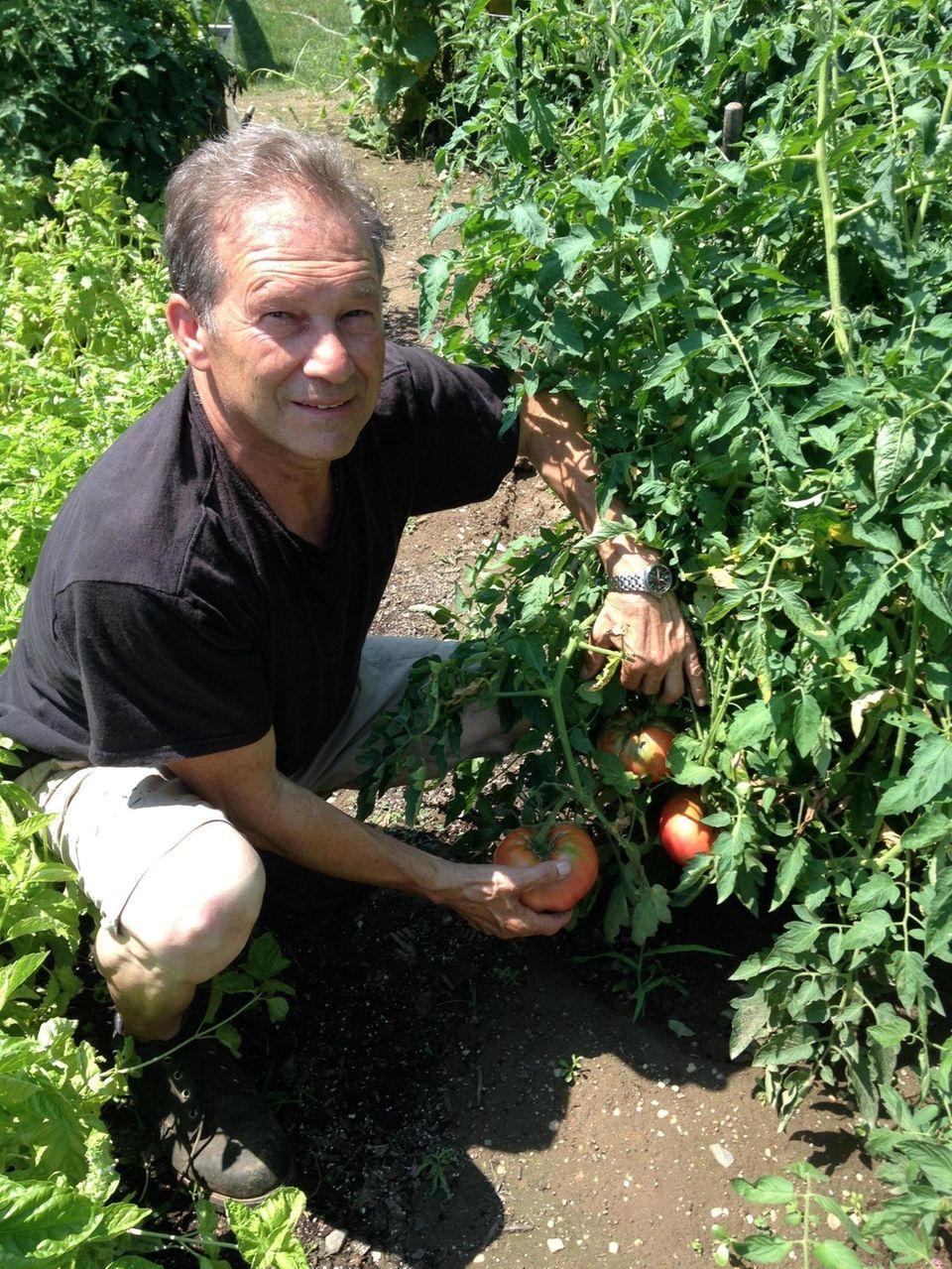 Giovanni Cicciarella of Deer Park with his tomato