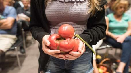 Catarina Rasizzi, of Northport, holds her ugly tomato