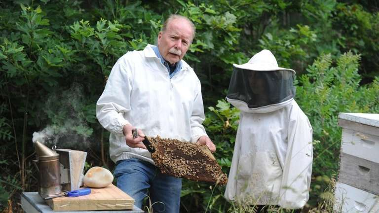 Beekeeper Rich Blohm, left, shows Jessica Damiano a