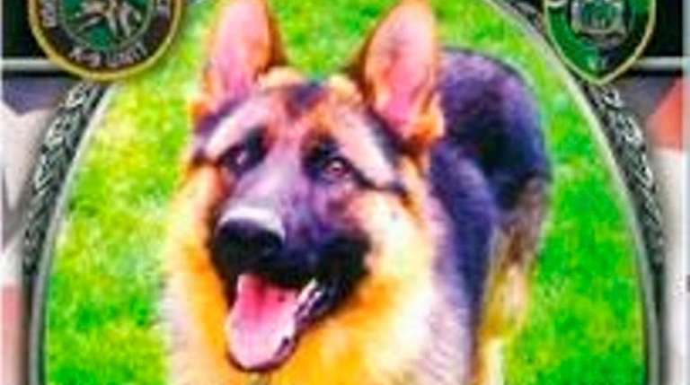 K-9 Rocky, who had been had been with